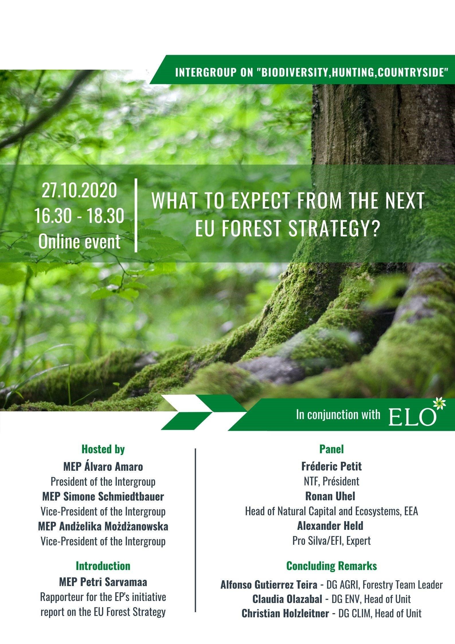 Next EU forest strategy ?