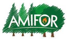 Amifor-logo2