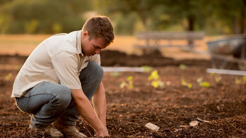Jeune agriculteur (c) Jed Owen